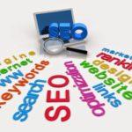 ceidg wyszukiwarka pkd